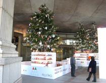 クリスマスツリーにたくさんのぬいぐるみが