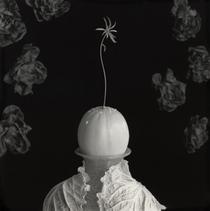 「メロンの人」(白菜ボレロを着たローズ)