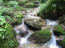 ここは木曽川の源流のひとつです