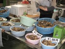 牡蠣を食べに岡山は日生に行ってきました