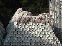 ホタテ貝の残骸アート