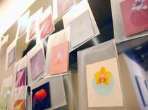 「アート・マグネット」の新シリーズ・森雅美さんの「FLORA」