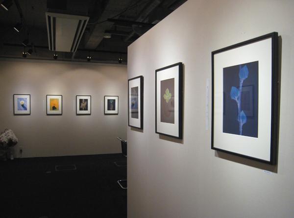 PAXREXで開催中の展覧会「雅花」