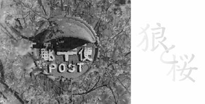 本田かな写真展「狼と桜」