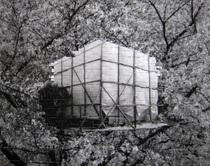 「建築中の家と桜」