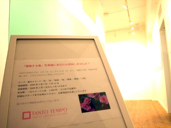 「TANTO TEMPO」の今回の展覧会は「増殖する春」