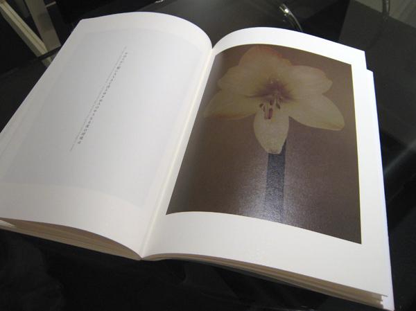 写真集「雅花」の序文は眞野あずささんが